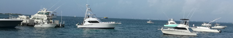 Cancun Luhrs Fishing Boats