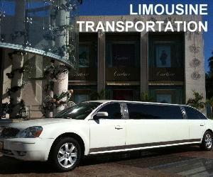 limousine VIP transportation