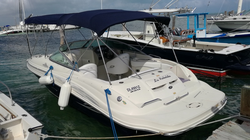 Searay Sundeck boat rental