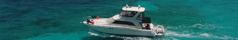 Rent a Boat Sea Ray with Fly Bridge