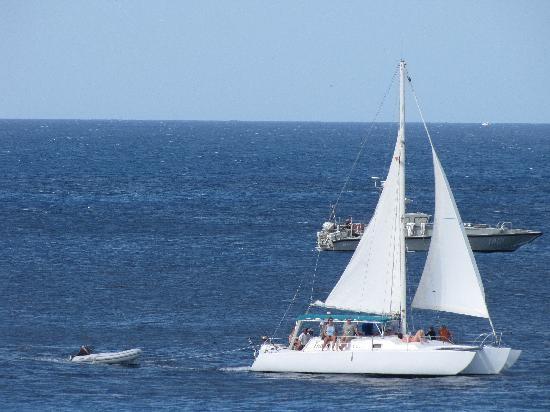 Small Catamaran Tucan